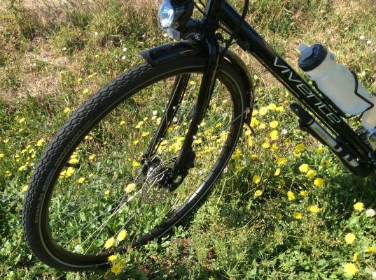 Schwalbe Marathon tyres on Vivente Anatolia.