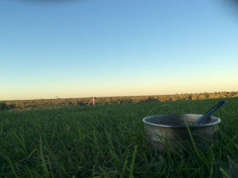 The Bicycle Pedlar - sunset dinner
