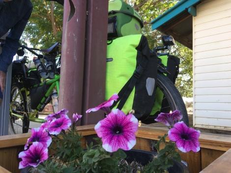The Bicycle Pedlar - cycle touring Blackall