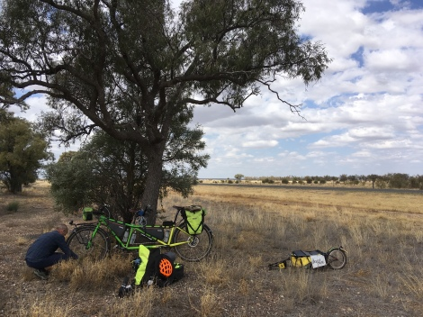 The Bicycle Pedlar - cycle touring Blackall to Tambo